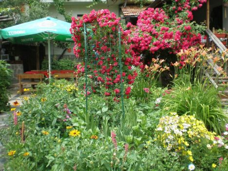 Лятна градина